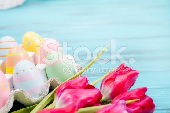Easter eggs, tulips on vintage blue wood background. royalty-free stock photo