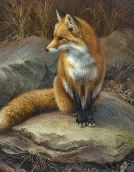 Fox painting by artist Joni Johnson Godsy.