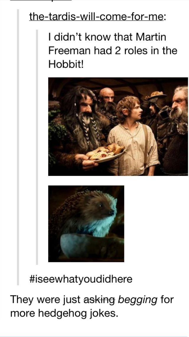Martin Freeman had two roles in the Hobbit. I laughed during this part of the movie because I knew there would be hedgehog jokes.