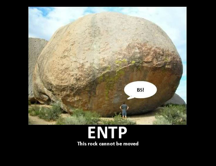 119 best images about Myers-Briggs Type Indicator® (MBTI ...