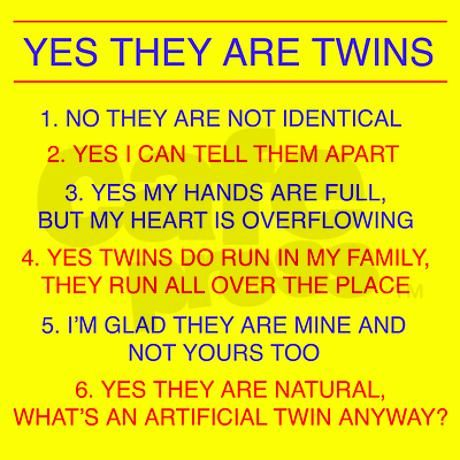 Twins Questions Fraternal Stein on CafePress.com