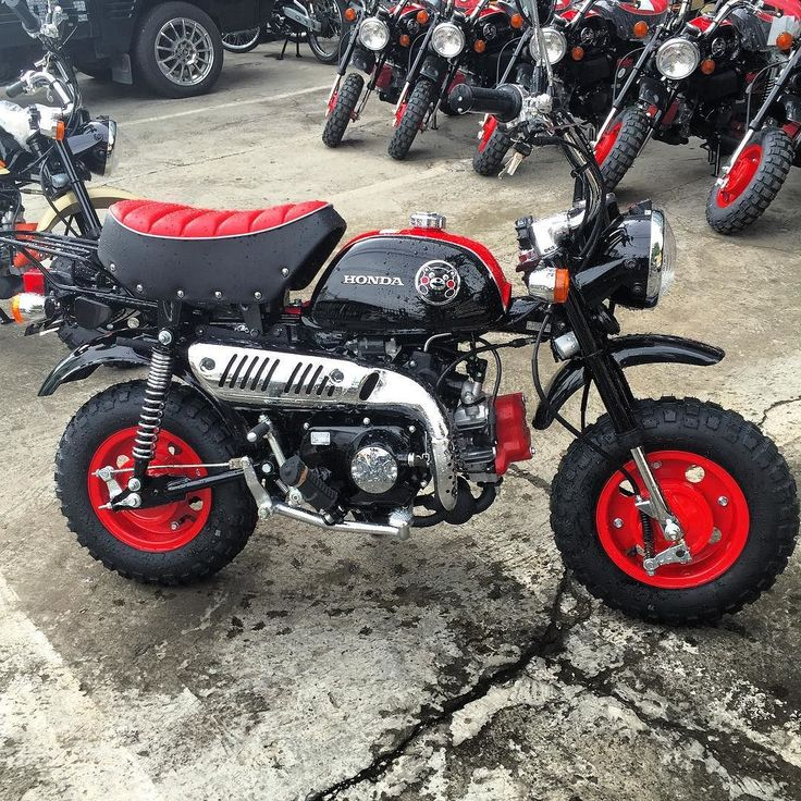 Honda Monkey Kumamon #honda #monkey #hondamonkey #minibike #kumamon #kumamoto #bigbike #hobbymotor #caferacer #indonesia #motormimpi #pondokindah #gandaria #caferacer by hobbymotor