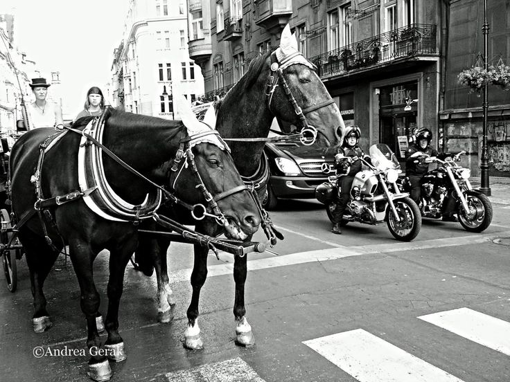 Two decorated horses and two motorcycles waiting  (or racing?) at the traffic light in Old Town Prague License this photo  View Black&White Slideshow with a song from Fililibi, and you can also...