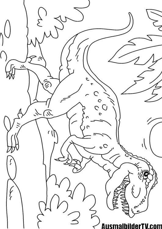 T Rex Ausmalbild Malblätter Und Ausmalbilder Pinterest
