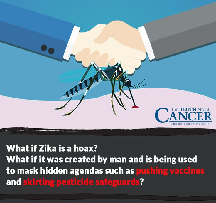 The Zika Virus (or Zika) is the latest big health scare and mainstream medicine and the lapdog mainstream media are playing up the scare for all it's worth. But what if Zika is a hoax? Click on the image above and read part one of this two-part series for what you need to know about Zika!