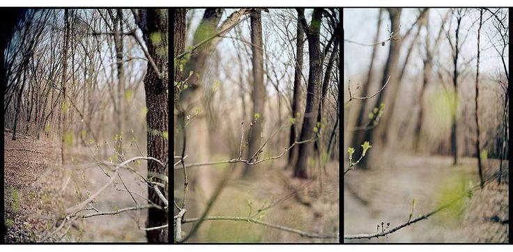 JoAnn Verburg | i n s p i r e d | Pinterest
