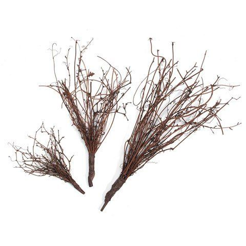 Looking for small natural twig branches to accent your floral arrangements? This beautiful, natural grapevine twig pick is perfect to give your DIY wedding bouquets and centerpieces a touch of rustic