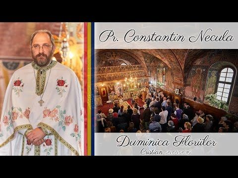 Parintele Constantin Necula - Predica in Duminica Floriilor - YouTube