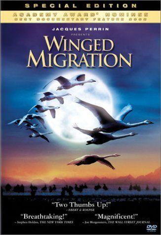 Winged Migration - Lesson Plans from Movies - migration, hibernation, dormancy, torpor