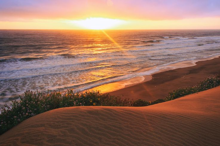 Dune Sunset by Michael Bonocore on 500px