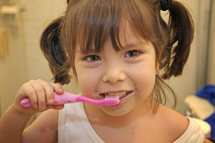 Gracias a las células madre, nuestros dientes se repararán por sí solos  ||  Un nuevo método que activa las células madre podría ayudar a reparar los dientes. Investigadores del King's College London implantaron esponjas de colágeno e... https://www.xatakaciencia.com/biologia/gracias-a-las-celulas-madre-nuestros-dientes-se-repararan-por-si-solos?utm_campaign=crowdfire&utm_content=crowdfire&utm_medium=social&utm_source=pinterest