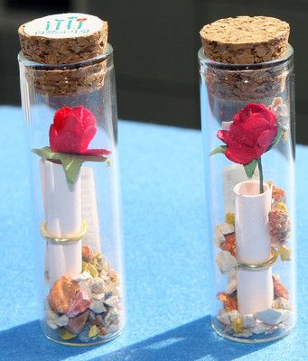 2 Message in a Bottle Message Bottles!