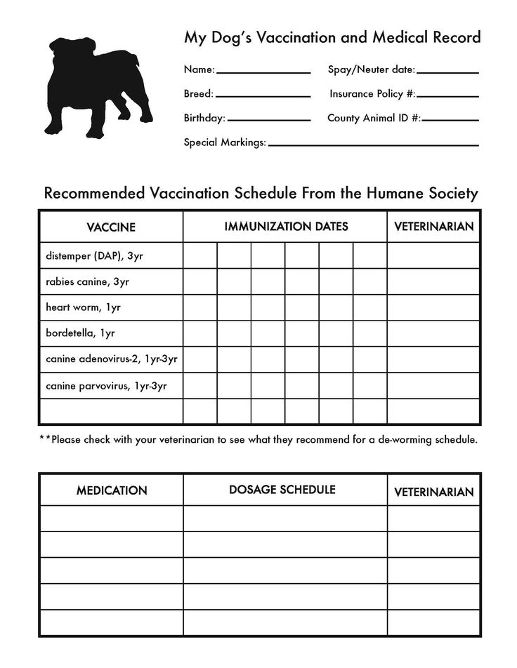 Printable Dog Shot Record Sheet | vaccination record puppies