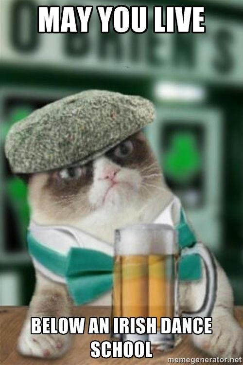Grumpy Irish cat - may you live below an irish dance school Literally laughed out loud at this one. OUT LOUD