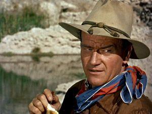 John wayne hondo western cowboy stetson hat photo poster reprint print new