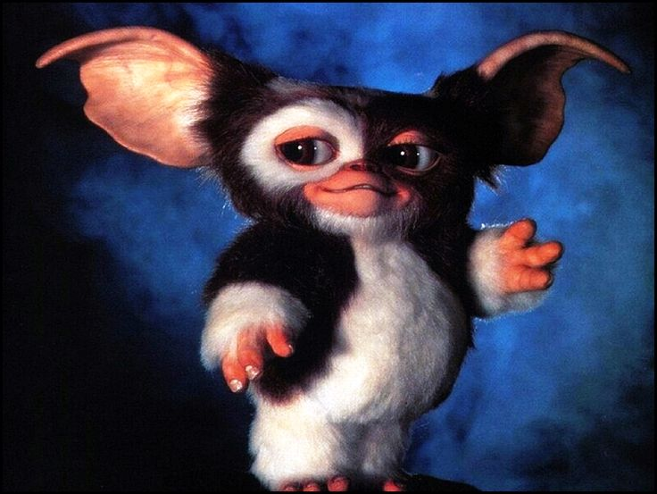 I am thinking about the #ChineseCulture term #Mogwai which can be translated from #Mandarin and #Cantonese #Chinese as meaning #monster or #demon. In the #Gremlins movie, the #Peltzers name the Mogwai, #Gizmo who is a #cute little #animal who likes to #sing.