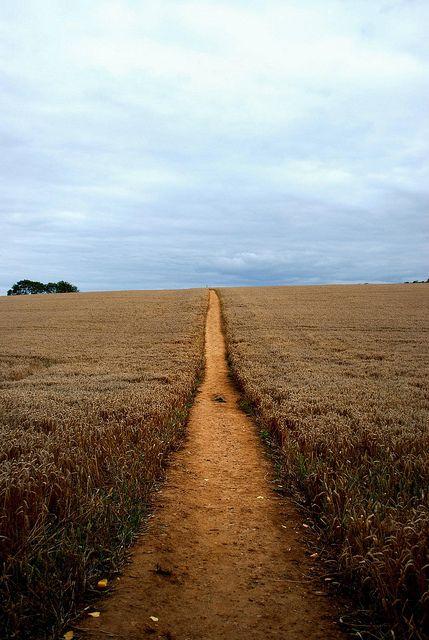Chipping Campden, Gloucestershire, England #travel #wanderlust