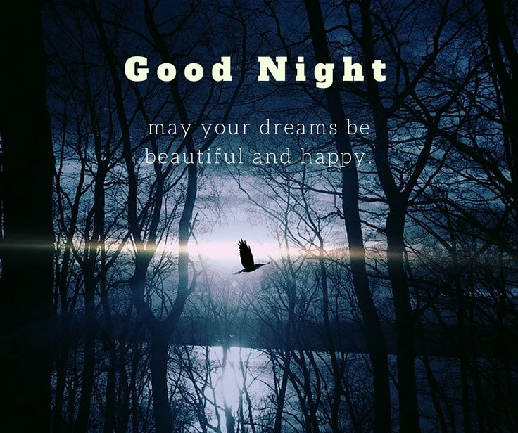 Good night. May your dreams be beautiful and happy.