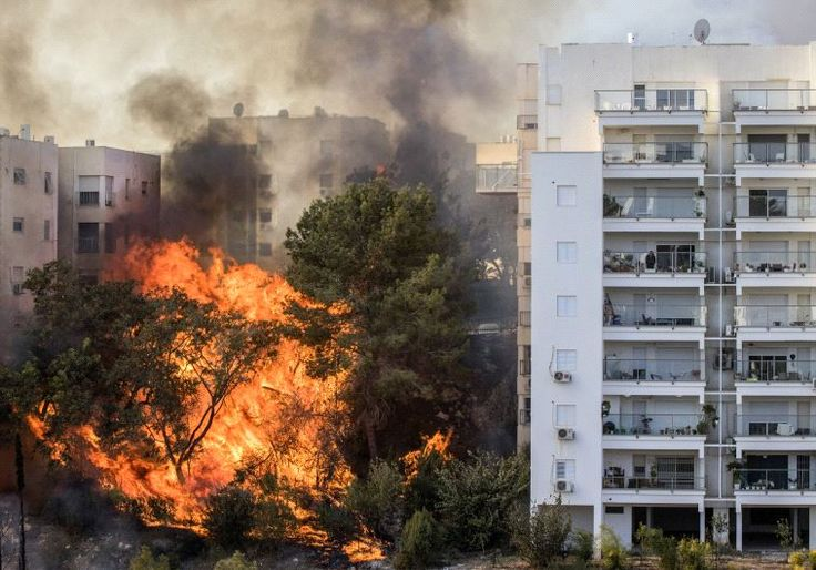 Israel in flames: Shin Bet opens investigation after arson suspected