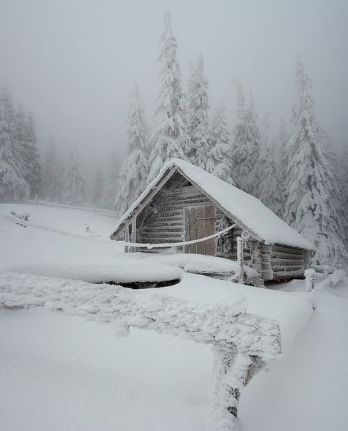 Log Cabin: Tiny House, Winter Cabins, Winter Wonderland, Cabins Fever, Logs Cabins, Tiny Cabins, Good Books, Snow White