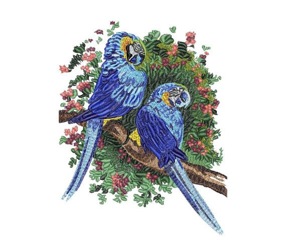 Parrot Tropical Birds Macaw Instant Download Machine