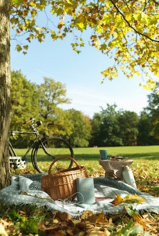 El otoño es la época perfecta para subir a la montaña y disfrutar de un picnic entre amarillos y marrones.