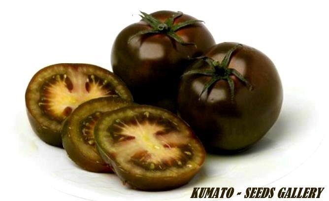 Kumato Tomaten 1000 Samen