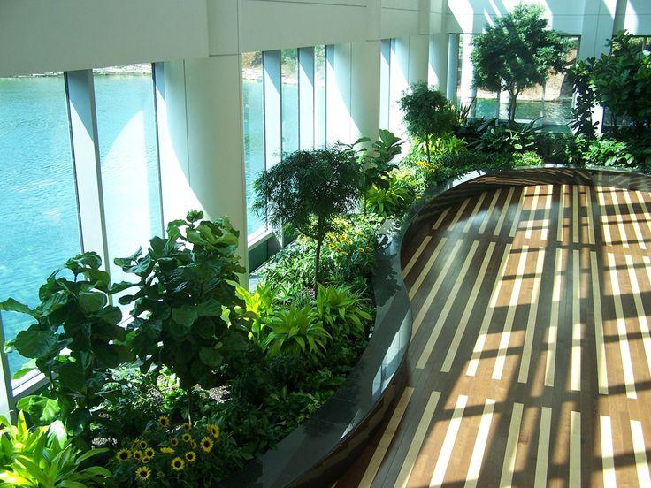 13 best Office Plants Office Plants that do well in lowlight