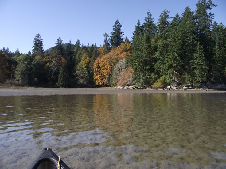 Autumn colours from the canoe.