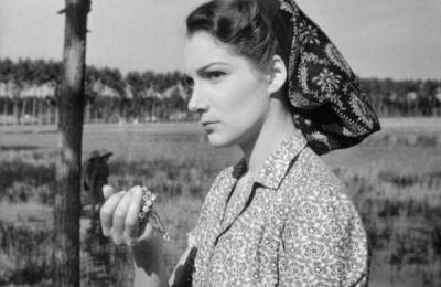 Vent'anni fa moriva Silvana Mangano. L'icona del cinema neorealista si spense a 59 anni   America Oggi