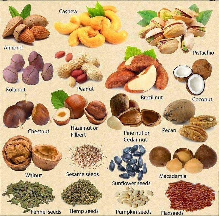 Орехи на английском #english #nuts #vocabulary #английский #орех