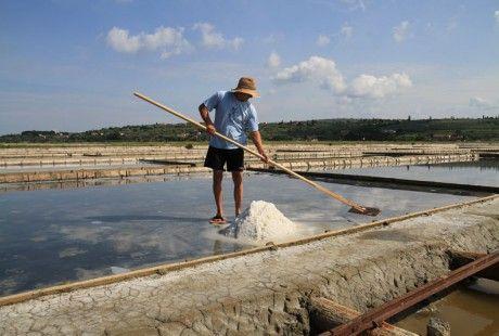 Ideja za izlet: Sečoveljske soline  Pokrajina pravokotnih solinarskih bazenov in opuščenih solinarskih hiš, ki se kopljejo v toplih sončnih žarkih, že od daleč zbudi našo pozornost in v nas prebudi občutek, da smo obstali v času.   Preberi več: http://www.eslovenia.si/magazin/ideja-za-izlet-secoveljske-soline/#sthash.NkqiUJQM.dpuf