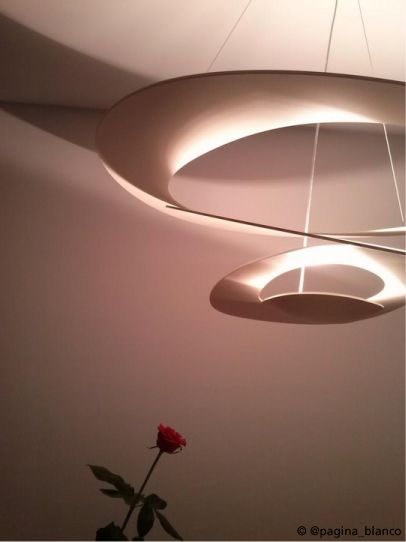 The rose and the #PIRCE suspension ! #design Giuseppe Maurizio Scutellà