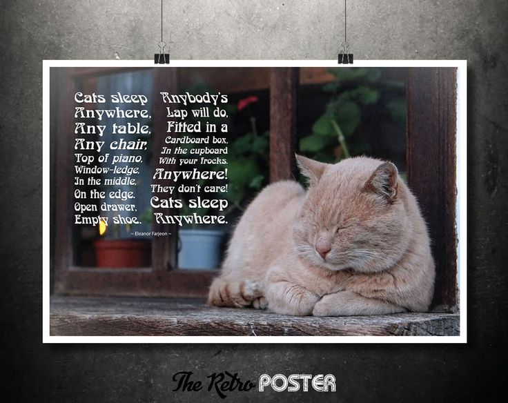 Cats Sleep Anywhere - Poem by Eleanor Farjeon - Cat Lover Gift, Cat Print, Poem Print, Typography, Cat Poster, Cat Wall Art, Cat Gift by TheRetroPoster on Etsy