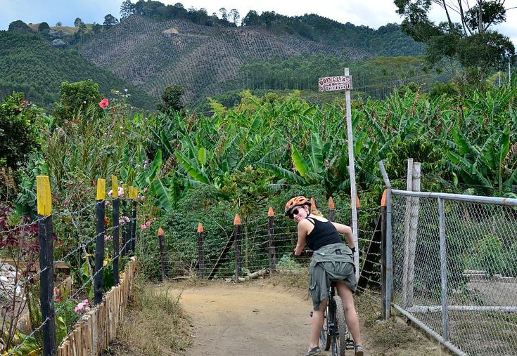 Bike Tour in Colombia: A ride through Salento's countryside