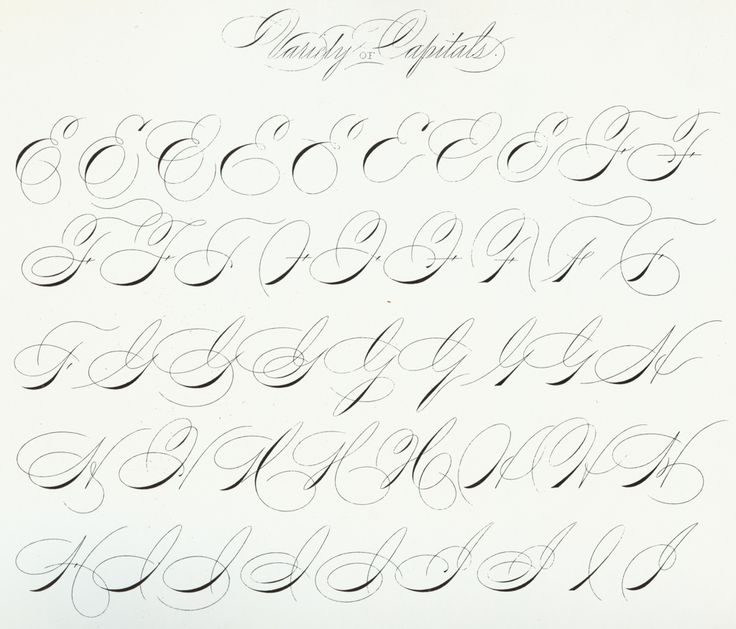 1000 Images About Caligrafia Inglesa Copperplate