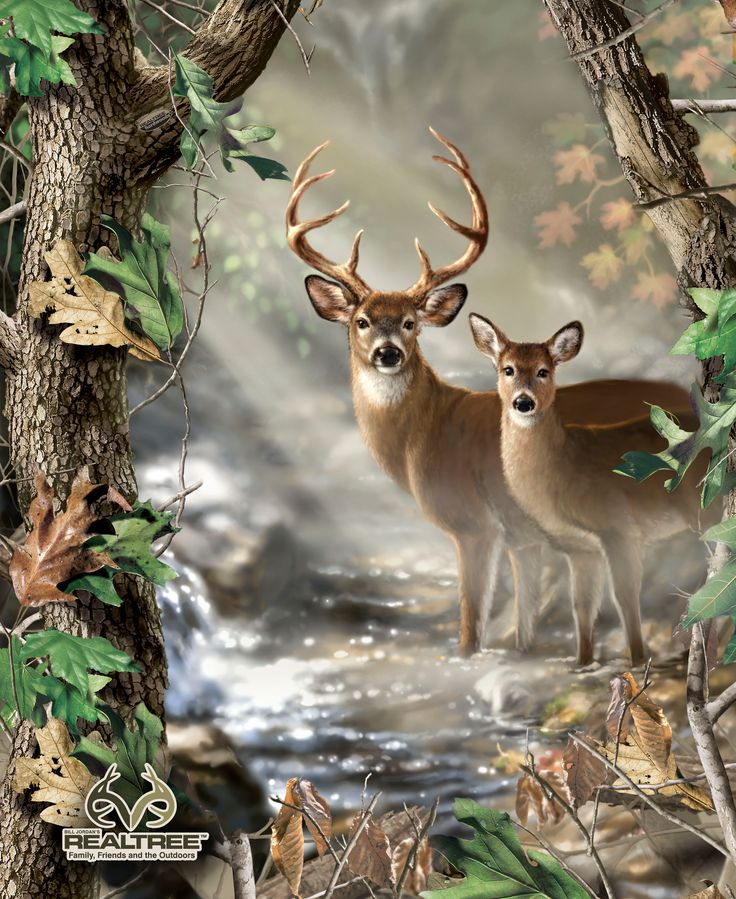 17 Best Images About Wildlife Fabrics On Pinterest Trees