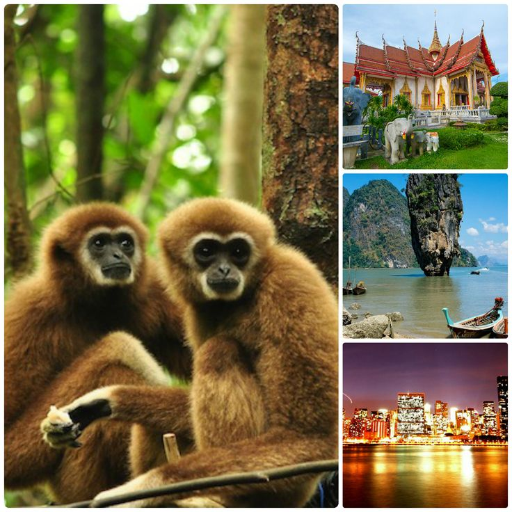With so many things to do and so many beautiful sites, you have to figure out which are the hottest places to go in #Thailand during your 4 Days 3 Nights Phuket Tour Package.