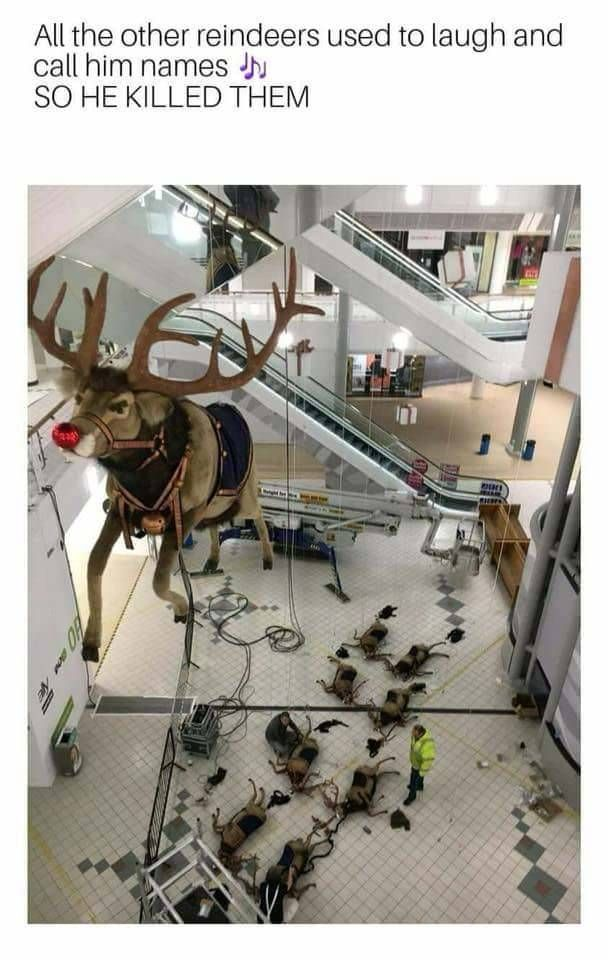 All of the other reindeer used to laugh and call him names. So the other reindeer had a little accident. http://ift.tt/2hemWyj #lol #funny #rofl #memes #lmao #hilarious #cute