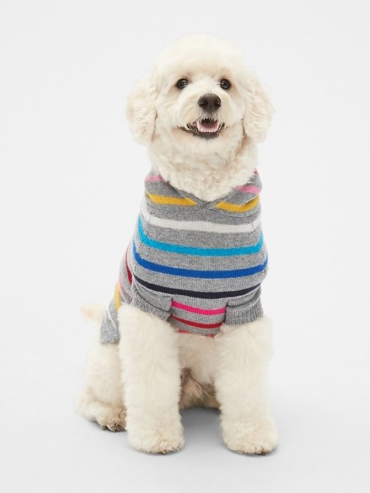 ef7f41fe32e Gap Womens Crazy Stripe Dog Sweater Hoodie Heather Grey | Products ...