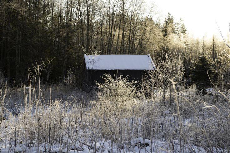 Hut at Sinober, Sørkedalen, Nordmarka, Oslo, Norway