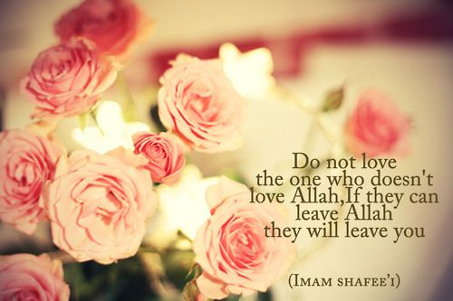 dont...: Pink Flowers, Islam Quotes, Faith, Pretty Pink, Flore Rosa-Choqu, Things, Pink Rose, The One, Sweet Dreams