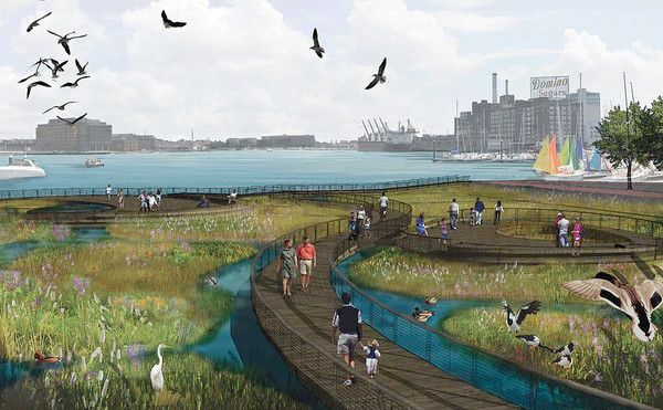 Floating wetland - Large harbor floating wetland project stirs debate - a marina owner in the harbor who cannot rent space wants to take on this project to improve the harbor. Environmental groups and scientists support the project as it would restore habitat and remove nutrients benefitting water quality.
