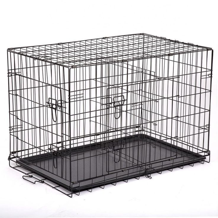 how to clean a dog cage