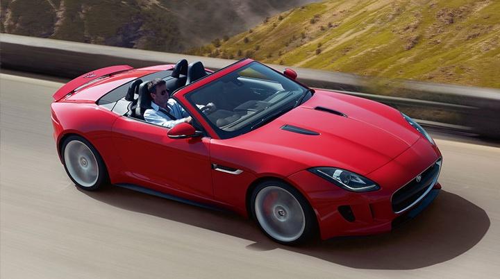 Exciting Jaguar