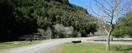 Walks in Waikato: Mangaokewa Scenic Reserve