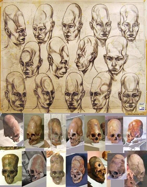 The many Peruvian Elongated Skulls, and recent DNA analysis showed unexplainable Alien DNA was in the mix.