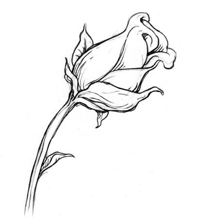 Rose free digi stamp