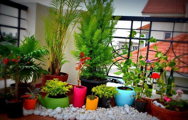 Can You Make Your Own Balcony Garden?