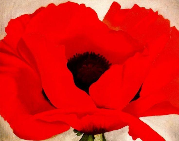 Red Poppy . Georgia O'Keeffe . 1927 .